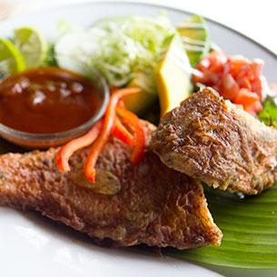 Salad & Fish Fried